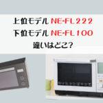 NE-FL222-100